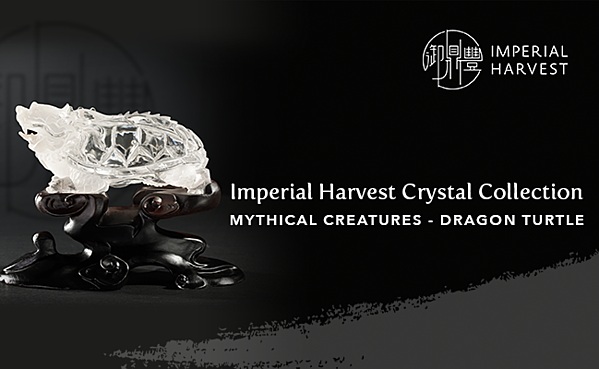 07.13_Mythical Creatures Crystal_Dragon Turtle-Banner
