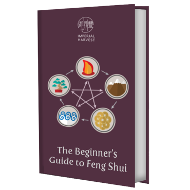 beginners guide ebook