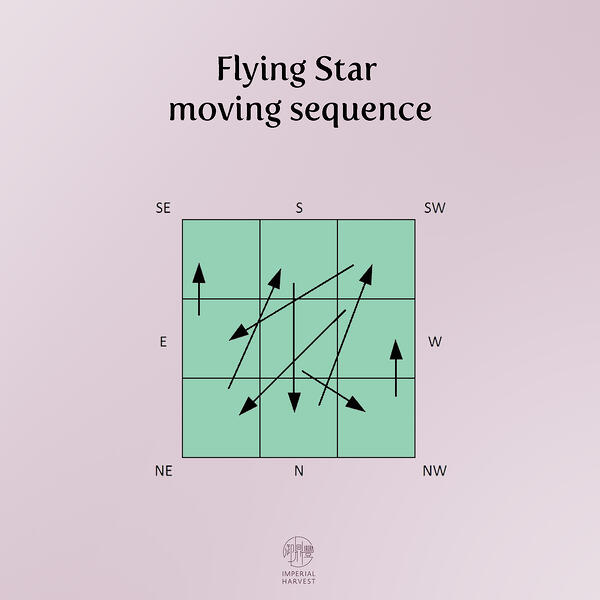flying sequence 3