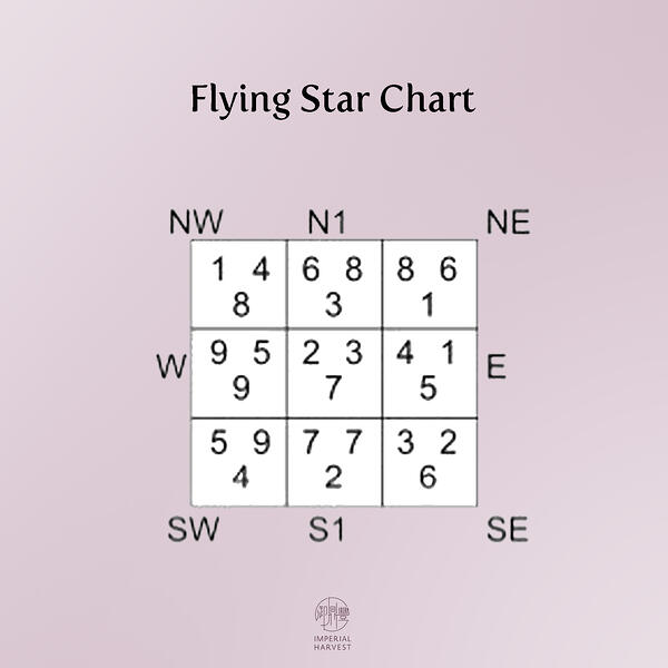 flying star c copy