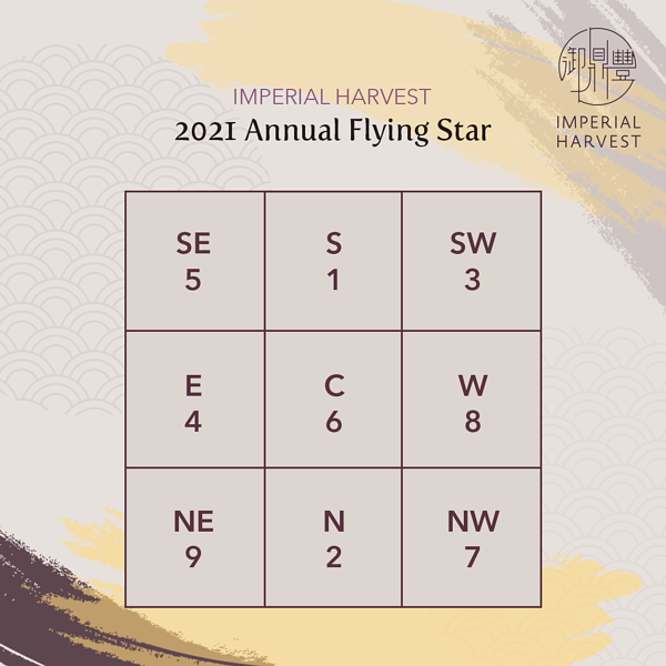 2021 Annual Flying Stars