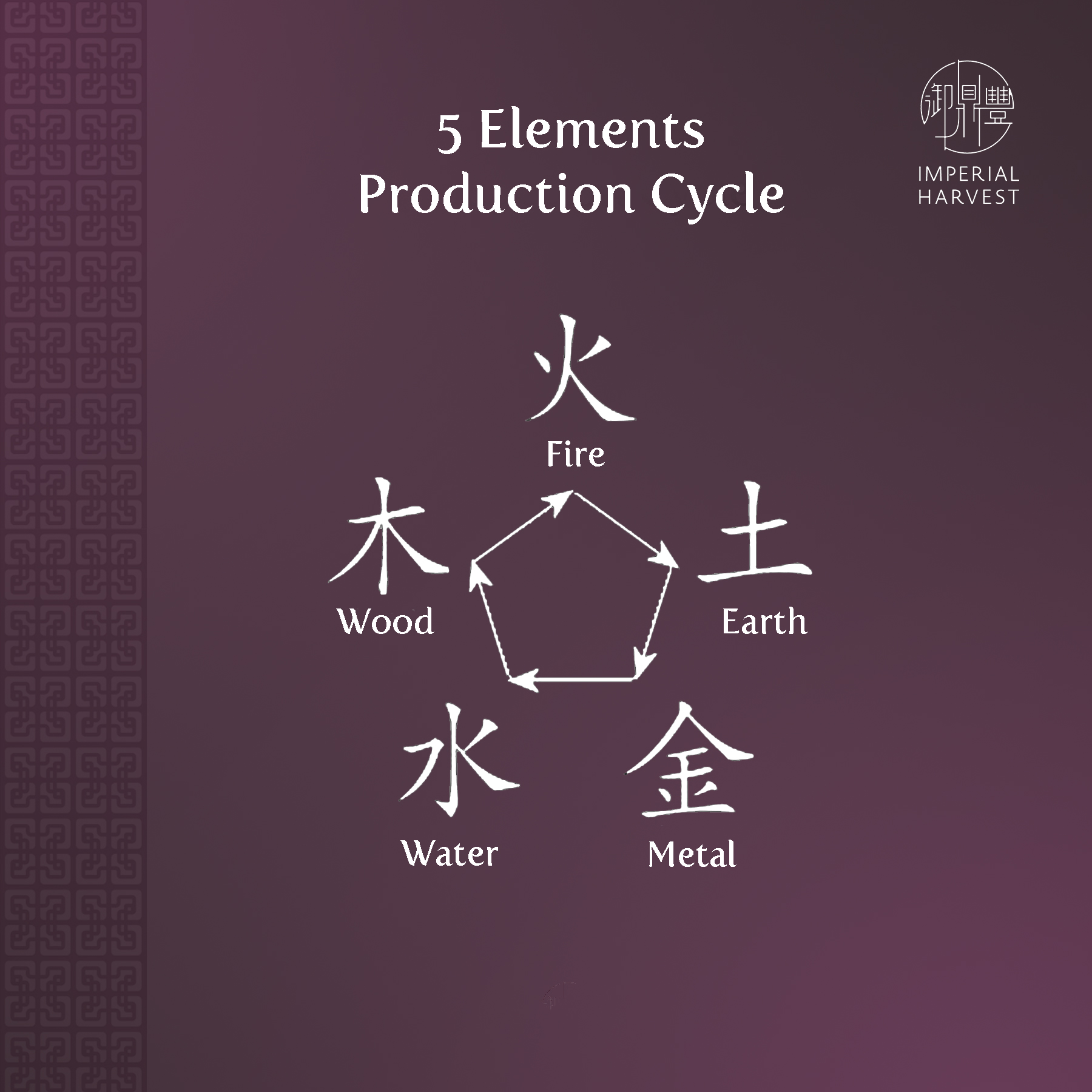 production_cycle_5element