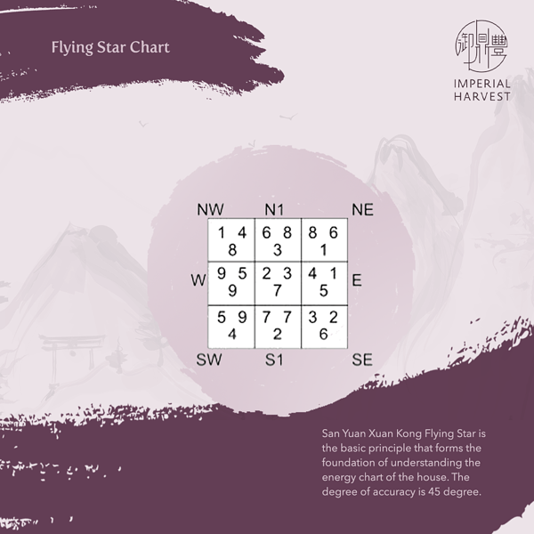 smhfs_part8_Flying Star Chart